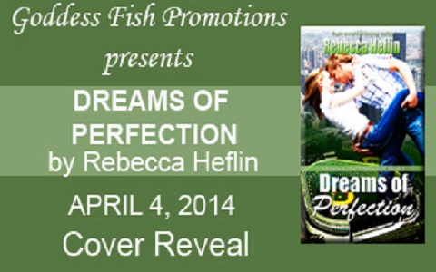 MBB Dreams of Perfection Banner copy